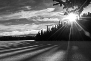 Yukon Light & Shadows © Bob Nishikawa