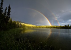 Double Rainbow Plus © John Reeve