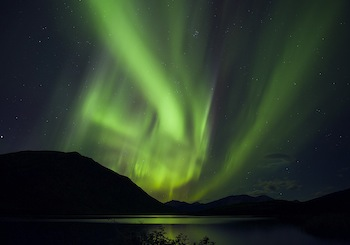 Yukon Night Lights © Norma Waddington