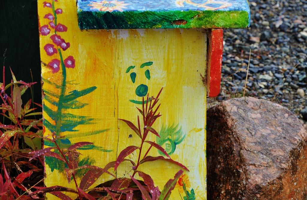 2 Fireweeds & a Smile Atlin Photo Club Trip 21 09 2014 012 (1024x670)