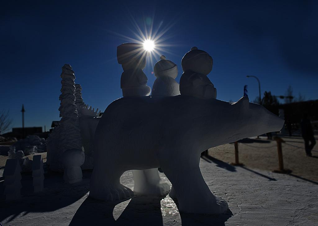 Norma Waddington - Ice Sculpture - Dark #2