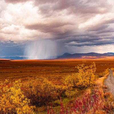 Fall Storm on the Tundra  ©Wendy Prior  19/27 points