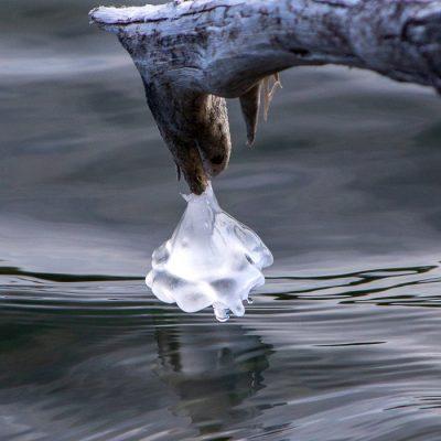 Ice Dragon Breath ©Ray Marnoch